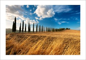 tuscany photo print for sale