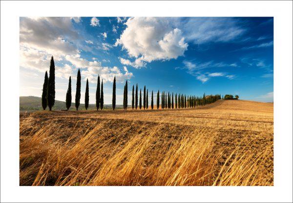 tuscany photo print for sale